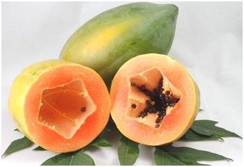 Trái cây với enzym Proteolytic 1